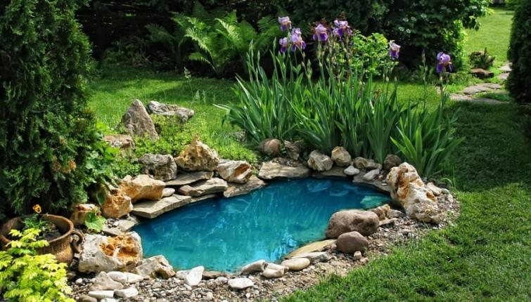 Jezerce Baštensko jezerce Ribnjak Dvorište Bašta
